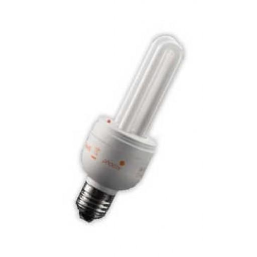 12V DC 11-Watt Compact Fluorescent Bulb