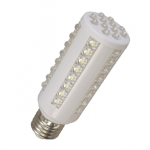 Central Lighting 12-24V/120V 550 Lumen LED Light Bulb