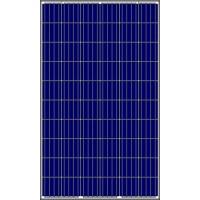 Amerisolar 6P30-250 Polycrystalline Solar Module