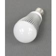 Central Lighting 12-24V/120V 600 lumen LED Bulb